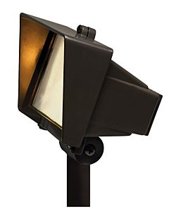 Flood Light with Frosted Lens